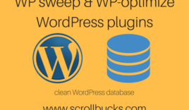 WP sweep and WP-optimize plugins to cleanUP WordPress database?