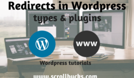 What are the different Redirects in WordPress?
